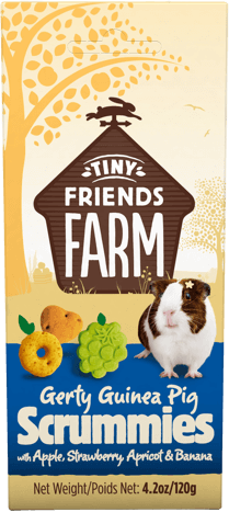 tff-gerti-guinea-pig-scrummies-front