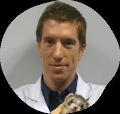 A man holding a ferret